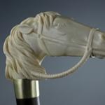 Bastone con manico d'avorio a forma di testa di cavallo, Inghilterra, seconda metà del XIX secolo.