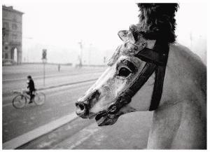"""AUGUSTO CANTAMESSA, """"Cavallo""""."""